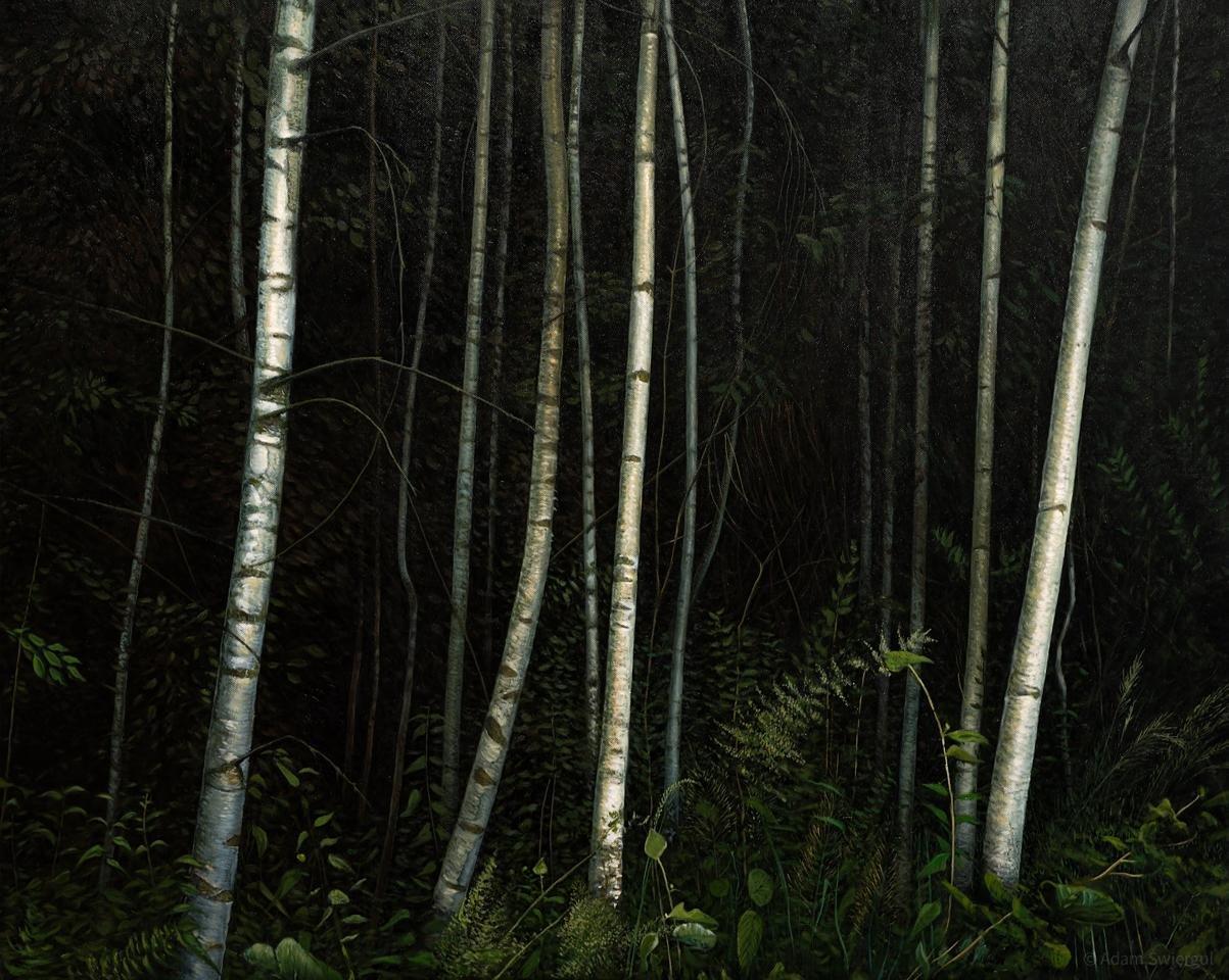 Brzozowy las
