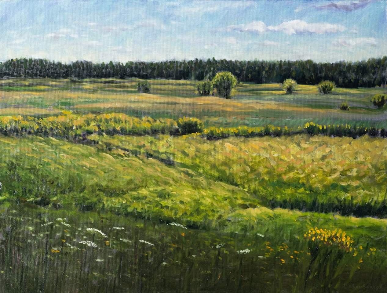 Dolina Wieprza - obraz olejny 61x43 cm