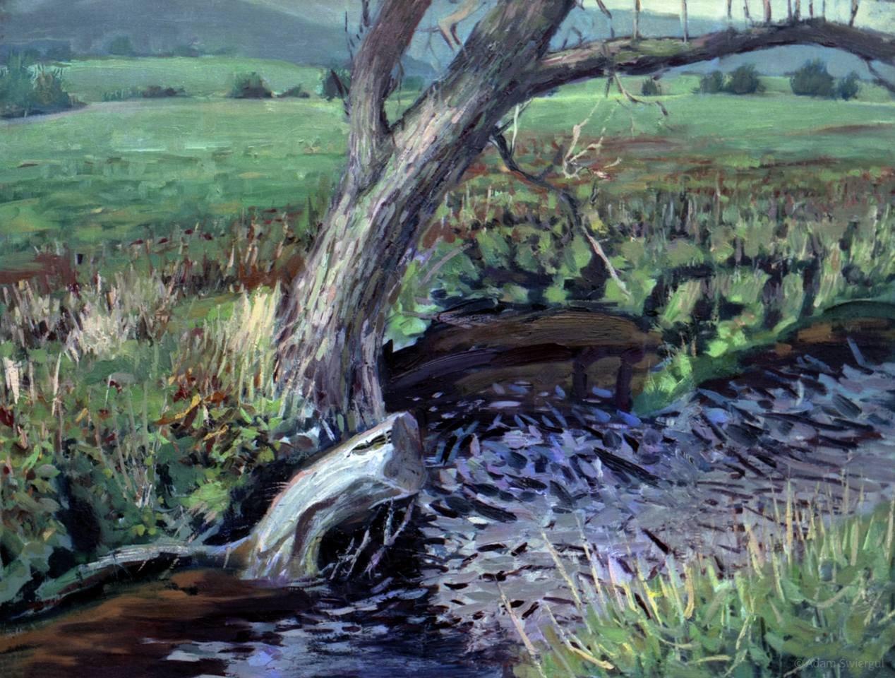 Drzewo i potok