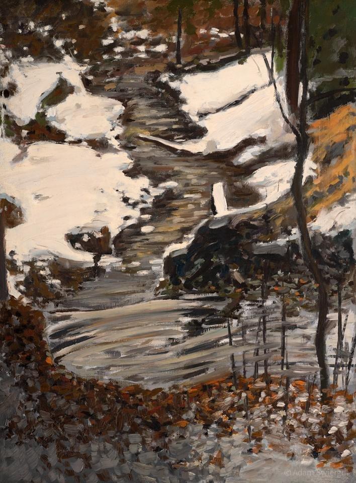 Potok zimą