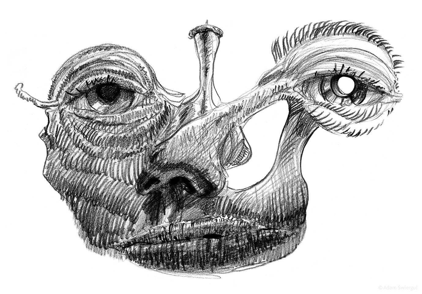 Wydrążona twarz