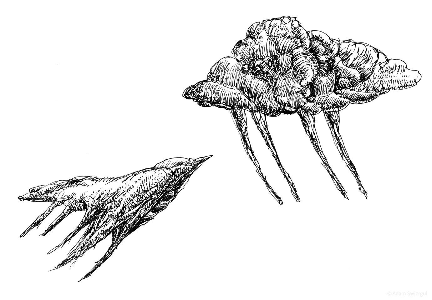 Chmura i ptak