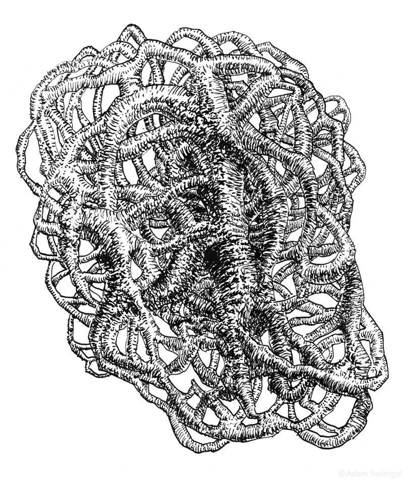 Korzeniokłąb