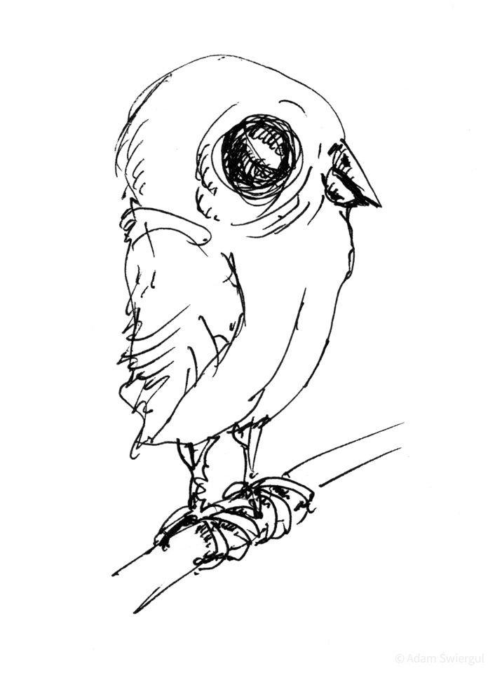 Ptaszek - rysunek, długopis