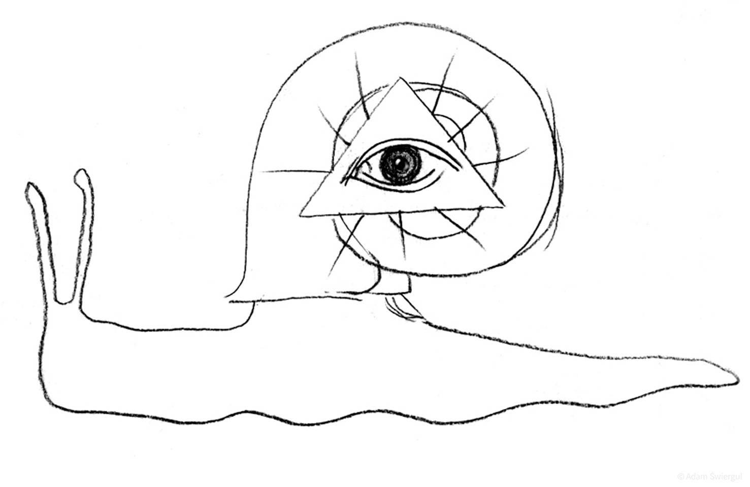 Ślimak oko