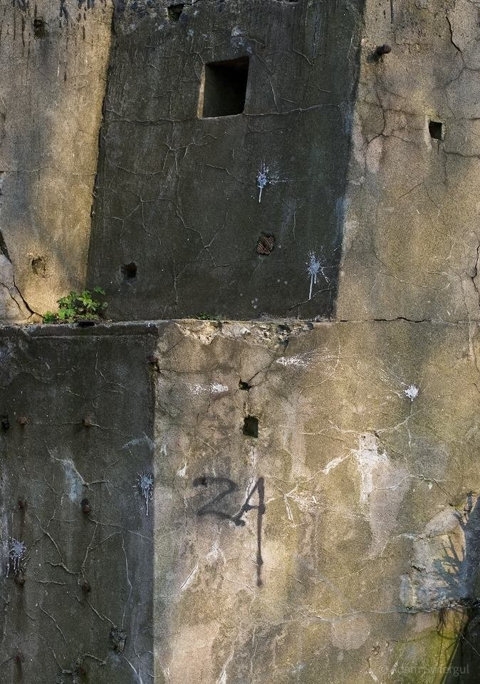 Fort Lasówka, detal