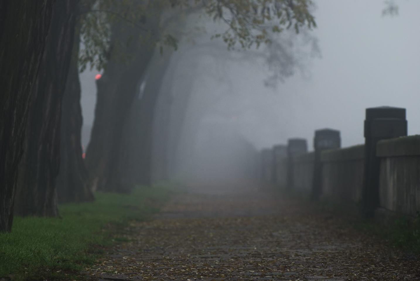 Mgła, bulwary wiślane