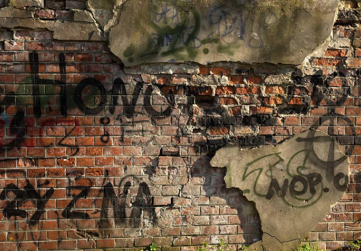 Mur Fortu Lasówka