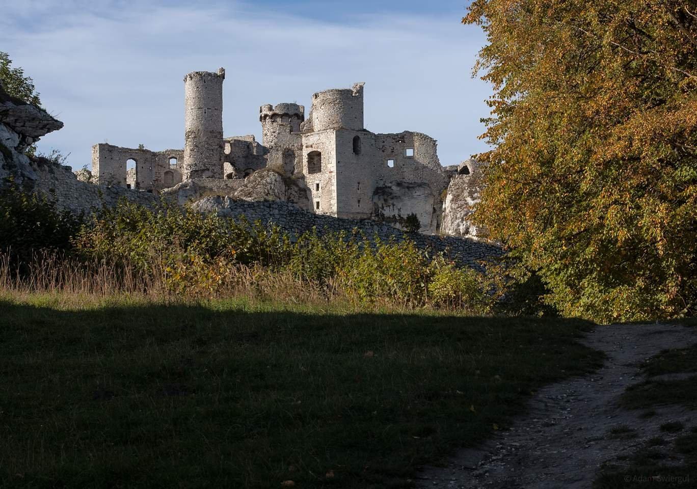 Ruiny zamku, Ogrodzieniec