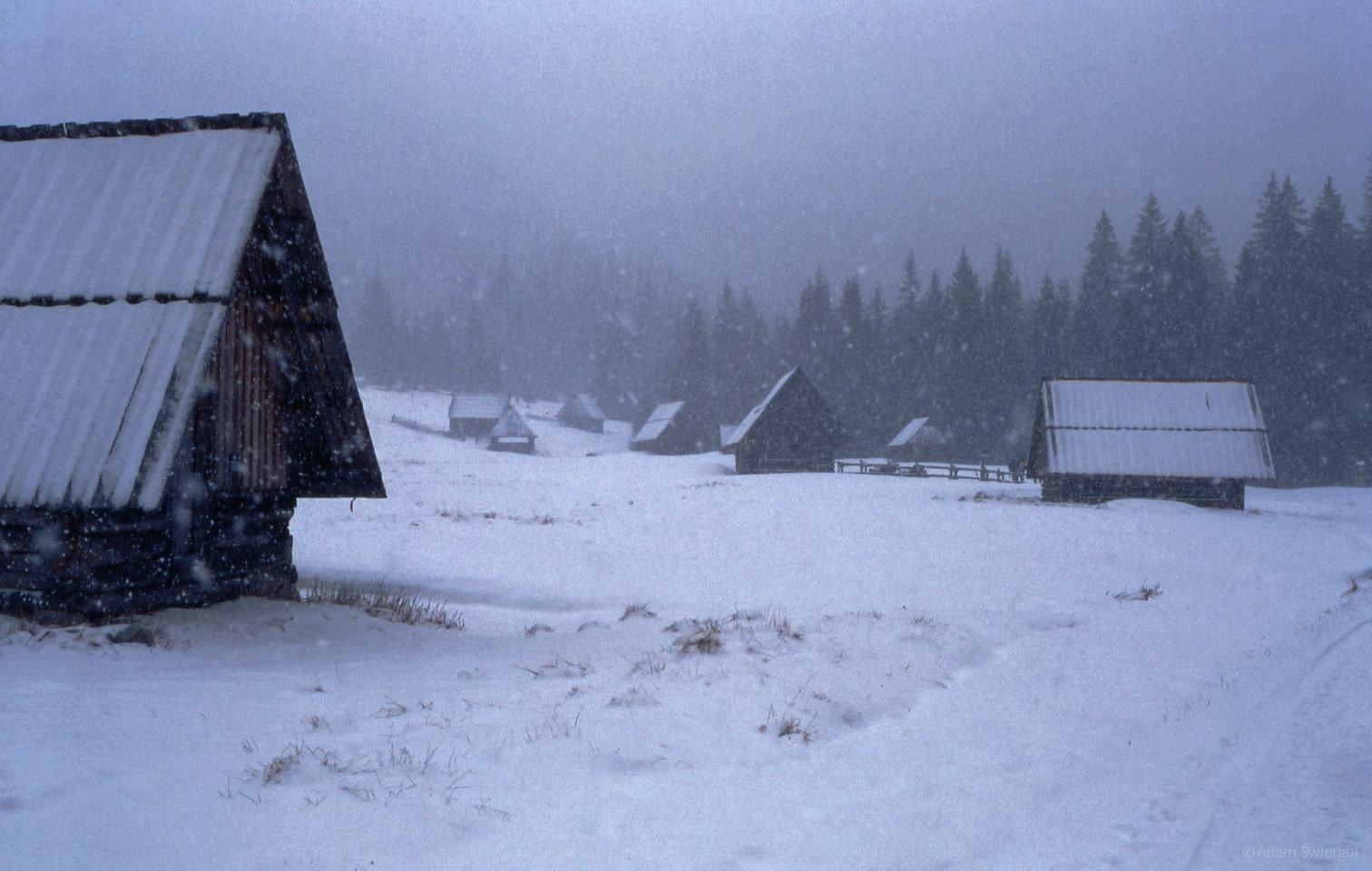 Śnieg, Dolina Chochołowska